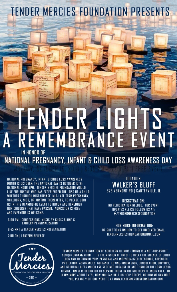 Tender Lights 2018